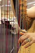 Harpist hands