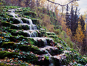 Natural travertine terraces with autumn colors beyond, Liard River Hot Springs Provincial Park, northern British Columbia, Canada.
