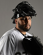 GLENDALE, ARIZONA - FEBRUARY 27:  Dioner Navarro of the Chicago White Sox poses for a portrait during White Sox photo day on February 27, 2015 at Camelback Ranch in Glendale Arizona.  (Photo by Ron Vesely)