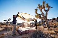 A couple pitching their tent while backcountry camping in Joshua Tree National Park.