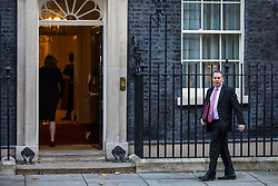 © Licensed to London News Pictures. 13/11/2018. London, UK. Secretary of State for International Trade Liam Fox arrives on Downing Street for the Cabinet meeting. Photo credit: Rob Pinney/LNP