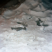 Pair of Grey gloves, found in the snow <br /> Columbus Ave between 105-106 Streets<br /> 14-February, 2003 / 9.45 PM