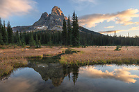 Liberty Bell Mountain reflected in headwaters of State Creek at Washington Pass. North Cascades Washington