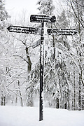 Snow covered sign post at Mont Royal Park in Winter, Parc du Mont Royal, Montreal, Quebec, Canada