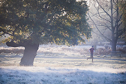 © Licensed to London News Pictures. 04/11/2020. London, UK. A man jogs through a frost covered landscape at sunrise in Richmond Park, south west London on a cold Autumn morning. Photo credit: Ben Cawthra/LNP