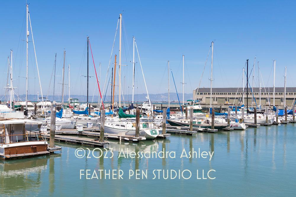 Boats docked at Pier 39, San Francisco.
