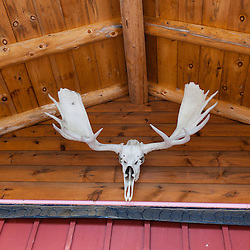 Moose antlers at Matagamon Wilderness Camps along the International Appalachian Trail near the north entrance to Baxter State Park.