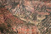 Bright Angel Canyon, North Rim, Grand Canyon National Park, Arizona