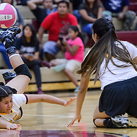 Rehoboth Lynx Kennedi Chapman (19) dives to a save a tip from the Crownpoint Eagles Thursday at Rehoboth High School.