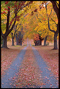 Fall foliage color in a natural setting around  Charlottesville, Va. Credit Image: © Andrew Shurtleff