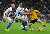 Football - 2018 / 2019 Premier League - Brighton & Hove Albion vs. Wolverhampton Wanderers<br /> <br /> Shane Duffy of Brighton challenges Diogo Jota of Wolves, at The Amex.<br /> <br /> COLORSPORT/ANDREW COWIE