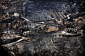 Greece wild fires