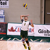 1st year setter Jake Fleming (1) of the Regina Cougars in action during the Women's Volleyball Home Game vs U of C Dinos on October21 at the CKHS University of Regina. Credit Arthur Ward/©Arthur Images 2017