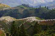 The Ping'an section of the Lóngji Rice Terraces otherwise known as the Dragon's Backbone, Longsheng, China