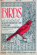 Front Cover From Birds : illustrated by color photography : a monthly serial. Knowledge of Bird-life Vol 1 No 4 April 1897