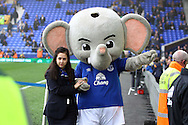The Everton mascot looks on. Barclays Premier League match, Everton v Sunderland at Goodison Park in Liverpool on Sunday 1st November 2015.<br /> pic by Chris Stading, Andrew Orchard sports photography.