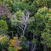 Franconia Notch, New Hampshire.