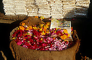 Rose petals and marigold heads for sale as votive offerings near the Holy Lake at Pushkar, Rajasthan, India