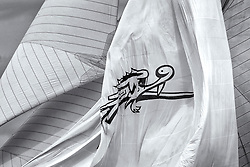 """Moonbeam spinnaker with Fife Dragon.<br /> Limited to ten prints in Black & White, printed on fine art paper 24""""x16"""", stamped and signed."""