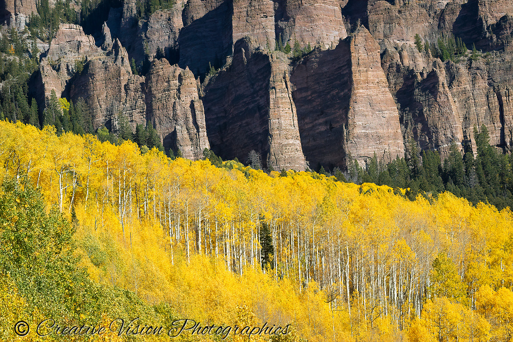Golden Aspens contrast with the rocky crags near Silver Jack Reservoir, Colorado