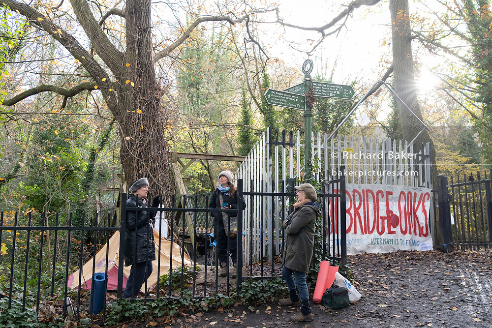 Activists protest in Sydenham Hill Woods against the proposed felling of two 100+ year-old oak trees, threatened by Southwark Council because of their proximity to 'Pissarro's' footbridge whose renovation has been deemed necessary by the local authority, on 17th November 2020, in London, England. The Nunhead to Crystal Palace (High Level) railway once passed through the Wood and Impressionist artist  Camille Pissarro (1830–1903) famously painted a railway landscape from the bridge in the 1870s. Sydenham Hill Wood forms part of the largest remaining tract of the old Great North Wood, a vast area of worked coppices and wooded commons that once stretched across south London. The habitat is home to more than 200 species of trees and plants as well as rare fungi, insects, birds and woodland mammals.