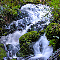 Cora Lynn Falls. Victoria. Australia. Framed by tree ferns and myrtle beech, Cora Lynn Falls is a magical cascading waterfall on the Cumberland Walk in the Yarra Ranges National Park near Marysville.