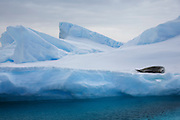 Detaille Island, South of the Antarctic Circle, Antarctica.