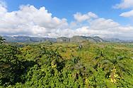 Vinales area, Pinar del Rio. Vinales, Pinar del Rio, Cuba.