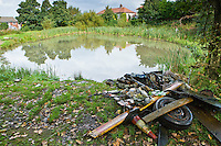 rubbish removed from a pond