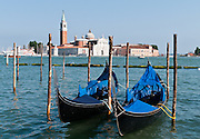"""Gondolas are moored on Saint Mark's Basin across from Chiesa di San Giorgio Maggiore, a 16th century Benedictine church on the island of the same name in Venice, Italy, Europe. The basilica was designed in the classical renaissance style by Andrea Palladio and built from 1566-1610. The white marble basilica rises above the blue water of the lagoon (San Marco Basin and Canal) across from Piazzetta San Marco. The campanile (bell tower), first built in 1467, fell in 1774, and was rebuilt in neo-classic style by 1791. Gondolas are traditional, flat-bottomed rowing boats which ferry people through Venetian canals. From a peak of 10,000 gondolas 200 years ago, just 500 gondolas now serve Venice. The banana-shaped modern gondola was developed in the 1800s. The left side of the gondola is made longer than the right side to resist leftwards drift at the forward stroke. The gondolier stands on the stern facing the bow and rows just on the right side, with a forward stroke and compensating backward stroke. The oar or rèmo is held in an oar lock, or fórcola, shaped for several rowing positions. The decorative fèrro (meaning iron) ornament on the front can be made of brass, stainless steel, or aluminum, as counterweight for the gondolier standing near the stern. The six horizontal lines and curved top of the ferro represent Venice's six sestieri (districts) and the Doge's cap. Painting gondolas black originated as a sumptuary law banning ostentatious competition between nobles. The romantic """"City of Canals"""" stretches across 117 small islands in the marshy Venetian Lagoon along the Adriatic Sea in northeast Italy, Europe. Venice and the Venetian Lagoon are honored on UNESCO's World Heritage List."""