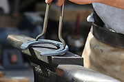 Farrier preparing a horse's hoof for new shoe Preparing the horseshoe
