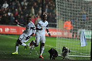 Swansea city's Dwight Tiendalli ©  celebrates after he scores his sides 1st goal to make it 1-1.  Barclays Premier league, Swansea city v Everton at the Liberty Stadium in Swansea,  South Wales on Sunday 22nd Dec 2013. pic by Andrew Orchard, Andrew Orchard sports photography.