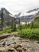 View of Victoria Glacier from near the Plain of Six Glaciers Teahouse; Lake Louise, Banff National Park, Alberta, Canada