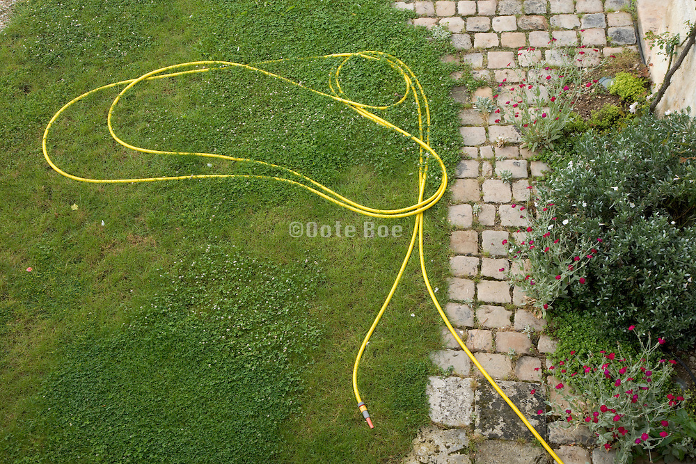 garden hose laying in the grass near flower bed