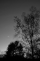 Late Fall Waxing Cresent Moon at Dusk. Image taken with a Leica X2 Camera (ISO 800, 24 mm, f/2.8, 1/60 sec). In camera B&W.