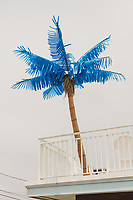 https://Duncan.co/plastic-palm-tree