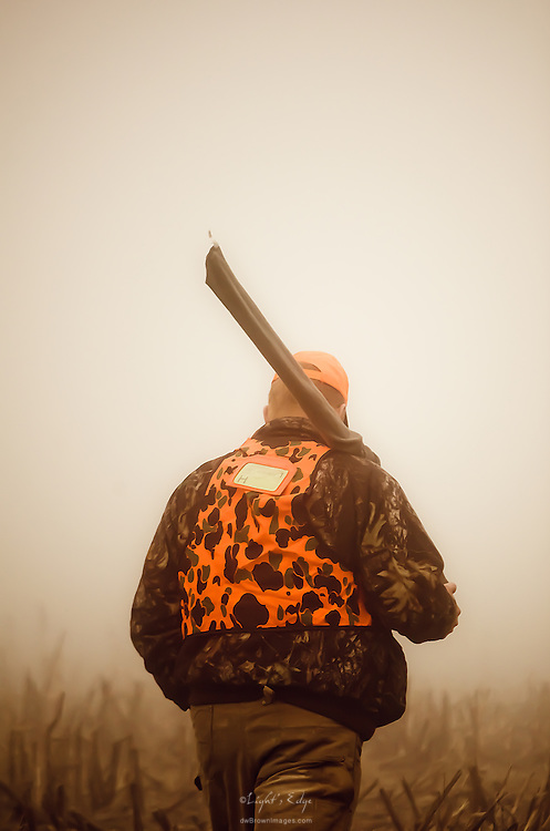 One of a group of hunters that worked together to drive deer from a wooded area returns to the meeting point following an unsuccessful foggy morning effort.