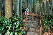 people wearing kimono in the bamboo forest garden at Hokokuji Temple Kamakura Japan