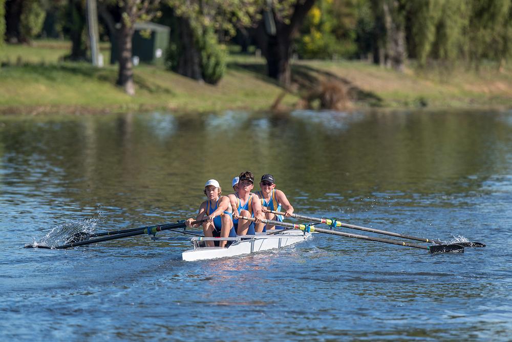 Crews training on the Avon River, Christchurch. Saturday 10th November 2018 © Copyright photo Steve McArthur / @RowingCelebration