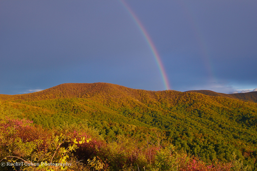 """""""Rainbow on the Ridge""""<br /> <br /> What is more beautiful than a lovely rainbow over the wonderful forests in the Blue Ridge Mountains during spring!!<br /> <br /> The Blue Ridge Mountains by Rachel Cohen"""