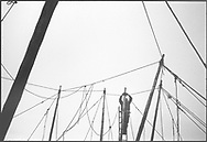 A salmon netter attaches connecting ropes to poles  during construction of the fly net on the rocks at Boddin, Angus.<br /> Ref. Catching the Tide 28/00/06a (6th May 2000)<br /> <br /> The once-thriving Scottish salmon netting industry fell into decline in the 1970s and 1980s when the numbers of fish caught reduced due to environmental and economic reasons. In 2016, a three-year ban was imposed by the Scottish Government on the advice of scientists to try to boost dwindling stocks which anglers and conservationists blamed on netsmen.