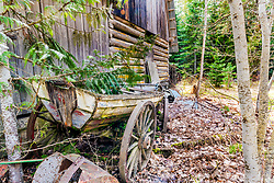 An old boat wagon?  I don't know but I'm glad I found it. An old moss covered log barn in Coeur d'Alene Idaho hosted a great variety of texture studies of archaic artifacts.