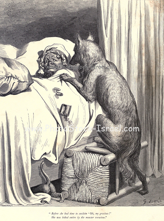 """Before she had time to exclaim """"Oh, my gracious!"""" She was bolted entire by the monster voracious."""" Illustration from 'Little Red Riding Hood' by Paul Gustave Dore (1832-1883). The big bad wolf devours the Old Lady in her bed illustration by Gustave Dore from the book Fairy realm. A collection of the favourite old tales. Illustrated by the pencil of Gustave Dore by Tom Hood, (1835-1874); Gustave Doré, (1832-1883) Published in London by Ward, Lock and Tyler in 1866"""