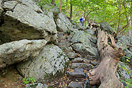 Vernon, New Jersey - A hiker, at top center, walks on the rocky path as the Appalachian Trail heads up Wawayanda Mountain on Sept. 22, 2012.