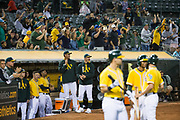 The Oakland Athletics celebrate a solo home run by Oakland Athletics designated hitter Khris Davis (2) hit against the Los Angeles Angels at Oakland Coliseum in Oakland, California, on September 5, 2017. (Stan Olszewski/Special to S.F. Examiner)