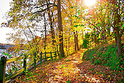 A walk in the fall to enjoy the autumn leaves at the Pointe on Lake Monroe. Near Bloomington Indiana in Monroe County.