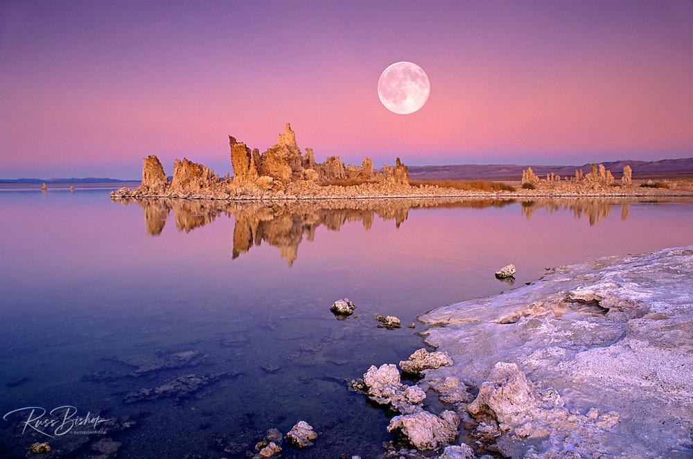 Full moon over tufa at dusk along the south shore of Mono Lake, Mono Basin National Scenic Area, California USA