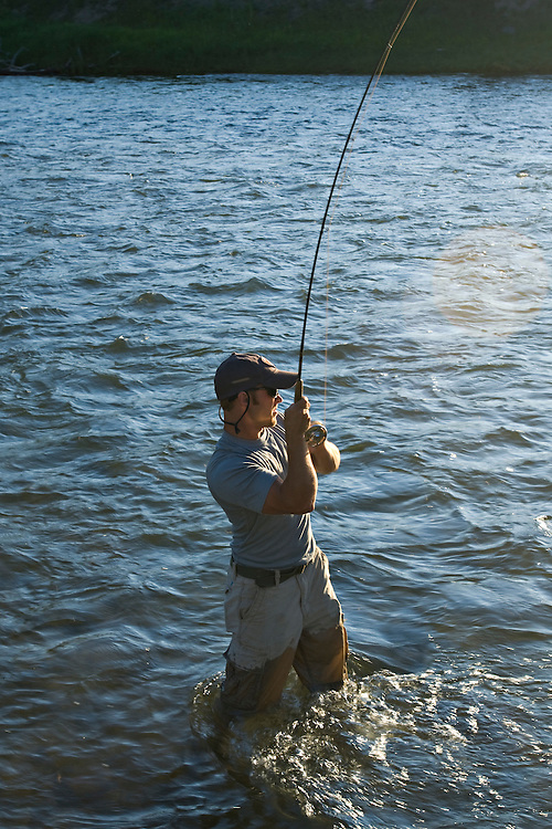 A fly fisherman fights a large fish while fly fishing for trout on the Madison River in Montana.