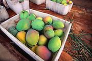 Mangoes, Hawaii<br />
