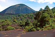 MEXICO, MICHOACAN STATE Paricutin Volcano ash field